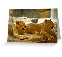 AAhhhh, Not us, We Didn't Do Anything, We were Home  Greeting Card