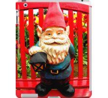 Red Bench iPad Case/Skin