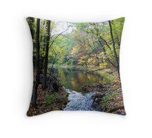 Forest Pond, Autumn, 2011 Throw Pillow