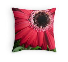 Bright Crimson Gerbera Plant Throw Pillow