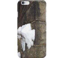 Harsimus Stem Embankment, Snow View, Former Pennsylvania Railroad Embankment, Jersey City, New Jersey iPhone Case/Skin