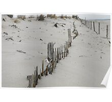 lines in dune Poster