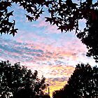 Sunset in Los Angeles by Christine Chase Cooper