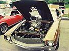 AMX... Go Package by John Schneider