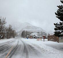 Snow storm by zumi