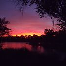 American River Sunset by christopher r peters