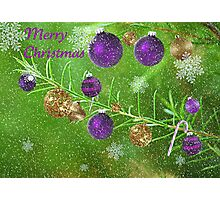 Merry Christmas 2011- Purple Photographic Print