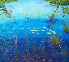 The Beauty of Nature by Pam Wilkie