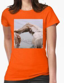 Ice Bridge Womens Fitted T-Shirt