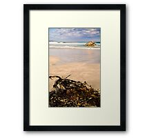 Seaweed at Carpenter Rocks Framed Print