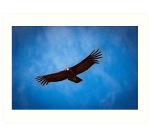The Old Man of the Skies, Colca Canyon, Peru Art Print