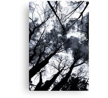 Surrounded by Trees Canvas Print
