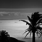 Gomera II by Laurent Aphecetche