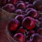 """""""An Apple A Day"""" by Melinda Stewart Page"""