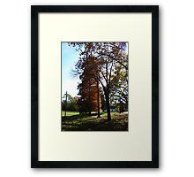 Fall Series 67 Framed Print