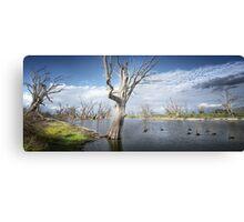 Murray River Scene Canvas Print