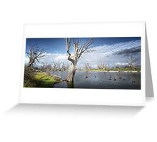 Murray River Scene Greeting Card