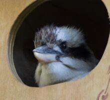 On The Nest Sticker