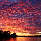 Sky Fire by Eileen McVey