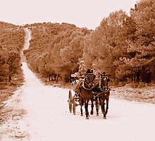 Wild West by Aase