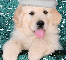 Christmas Puppy by Jenny Brice