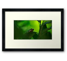 Being Green Framed Print