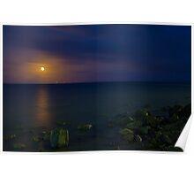 Moonlit Wellington Poster