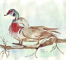 Carolina's (Wood Ducks) by Maree  Clarkson