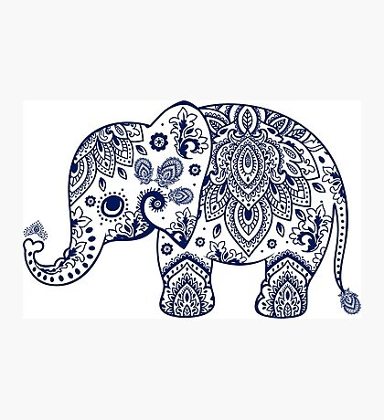 Blue Floral Elephant Illustration Photographic Print