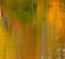 Abstract Autumn  by Gregory Ballos   gregoryballosphoto.com