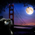 CAT BY THE GOLDEN GATE by Elizabeth Giupponi