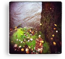 Riverside Left Canvas Print