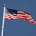 Carlisle Barracks US Flag by Jean Macaluso
