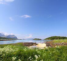 Norwegian Landscape by SeeOneSoul