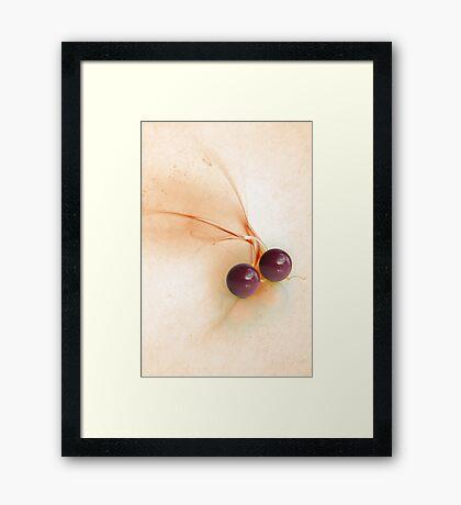 Kugel Design Framed Print