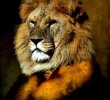 Lion Fashion by SuddenJim