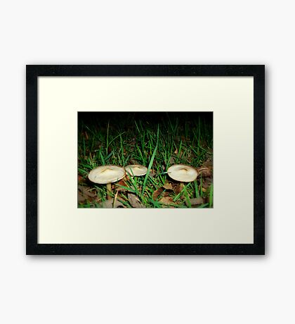 Flying Saucers Framed Print