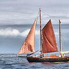 Maritime Calendar January by smilyjay