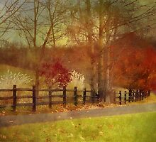 The country lane by vigor