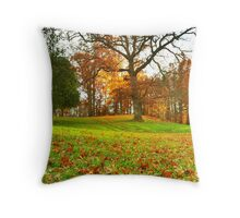 Leaves, leaves falling down! Throw Pillow