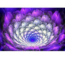 3D Blooms - Pastel Photographic Print