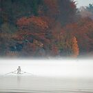 Early Morning Row by Karol Livote