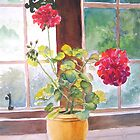 Geraniums at Gillthwaite Rigg, Windermere by Pat Yager