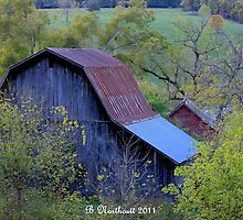 Back Of The Barn by Betty Northcutt