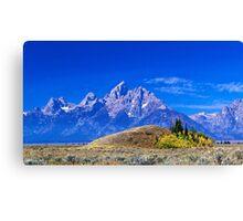 Majestic Teton Canvas Print