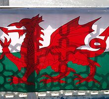 Welsh Dragon by kalaryder
