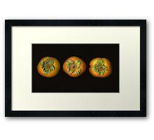 Fuyu Persimmons Framed Print