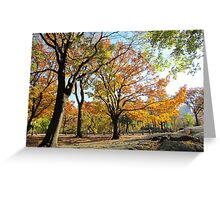 Gentle giants, Central Park - NYC Greeting Card