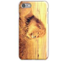 African Gold iPhone Case/Skin