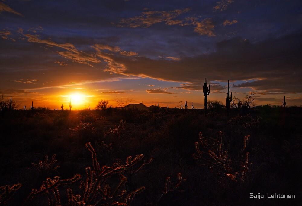 A Southwest Sunrise  by Saija  Lehtonen
